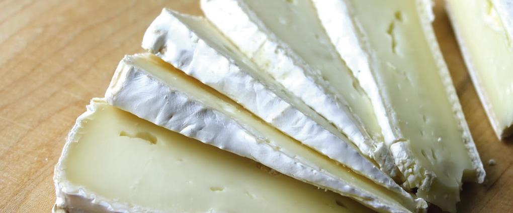 Queso brie de cabra quesos especiales s r l - Beneficios queso de cabra ...