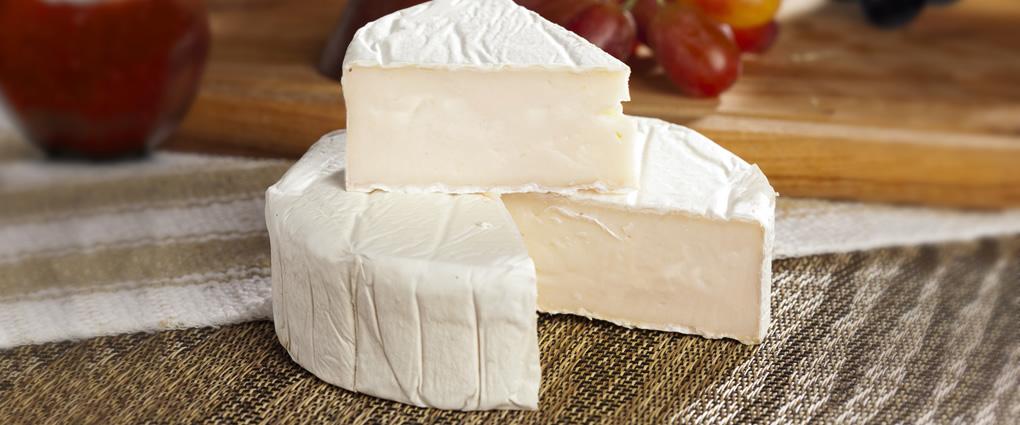 Queso camembert de cabra quesos especiales s r l - Beneficios queso de cabra ...